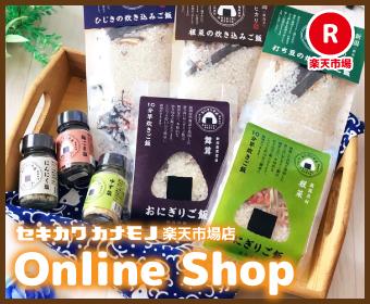 セキカワカナモノ online shop